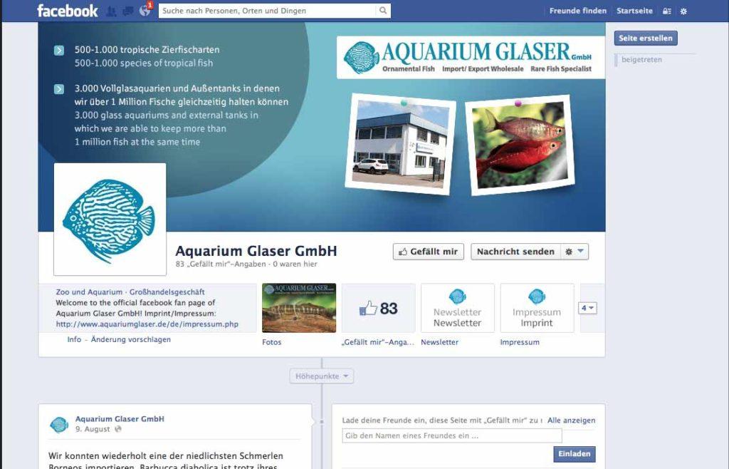 Aquarium Glaser bei Facebook